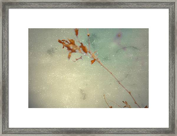 Continues Framed Print