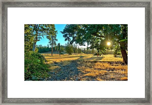 Cool Hazy Sunrise Framed Print