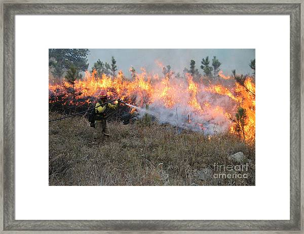 Cooling Down The Norbeck Prescribed Fire. Framed Print