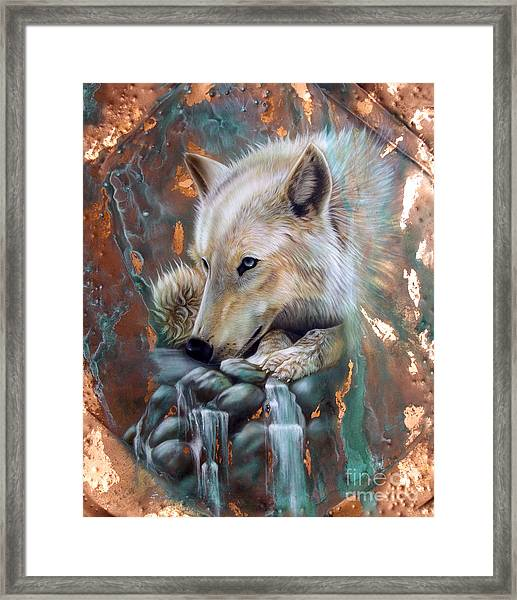 Copper Arctic Wolf Framed Print