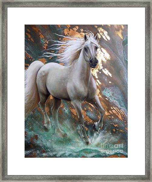 Copper Sundancer - Horse Framed Print