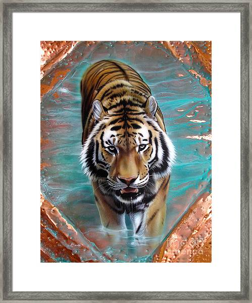 Copper Tiger 3 Framed Print