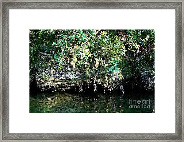 Coral Bluffs Framed Print