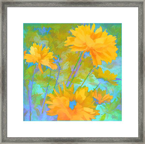 Coreopsis - Yellow And Green Framed Print