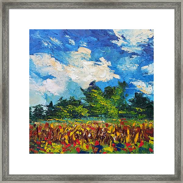 Corn Field Blue Sky Oil Painting Framed Print