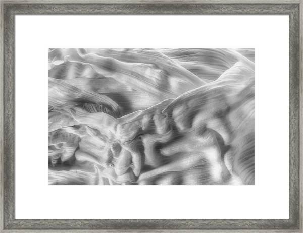 Corn Husk - A Beautiful Chaos Framed Print