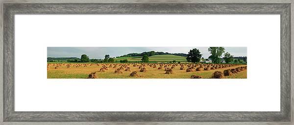 Corn Shocks, Amish Country, Ohio, Usa Framed Print