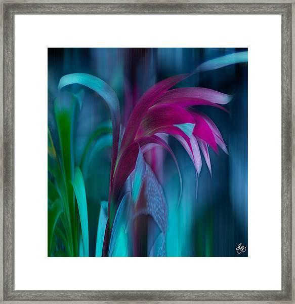 Cornflower Dreams Mindscape Framed Print