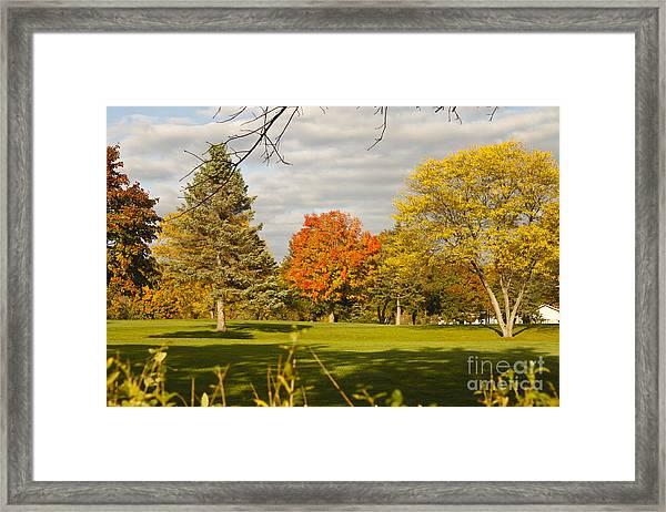 Corning Fall Foliage 5 Framed Print
