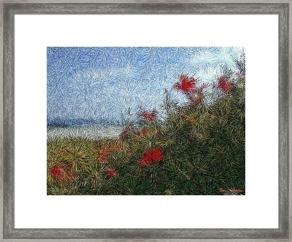 Coronado Beach Flowers Framed Print