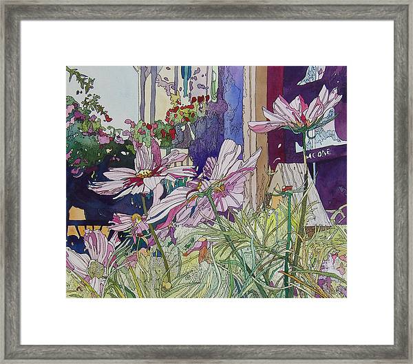Cosmos At The Coffee Shoppe Framed Print
