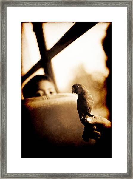 Costa Rican Bird Boy Framed Print