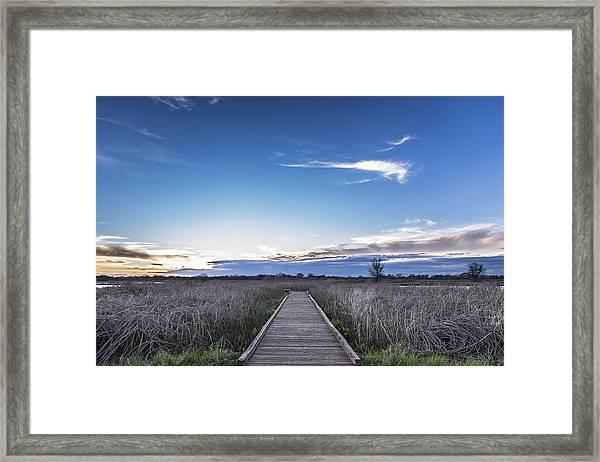 Cosumnes River Preserve Framed Print
