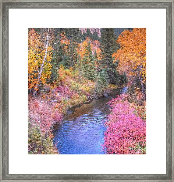 Cotton Candy Creek Framed Print