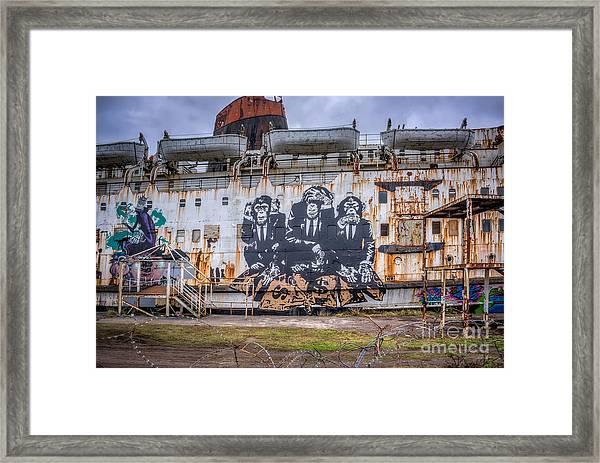 Council Of Monkeys Framed Print