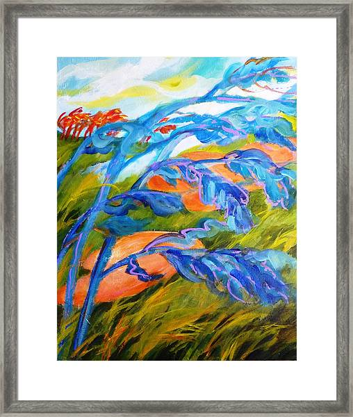 Count The Wind Framed Print