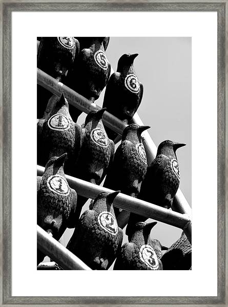 Counting On A Murder Framed Print