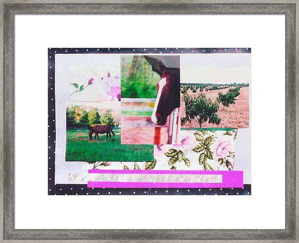 Country Collage 1 Framed Print