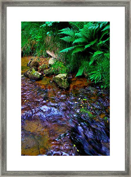 Country Stream Framed Print