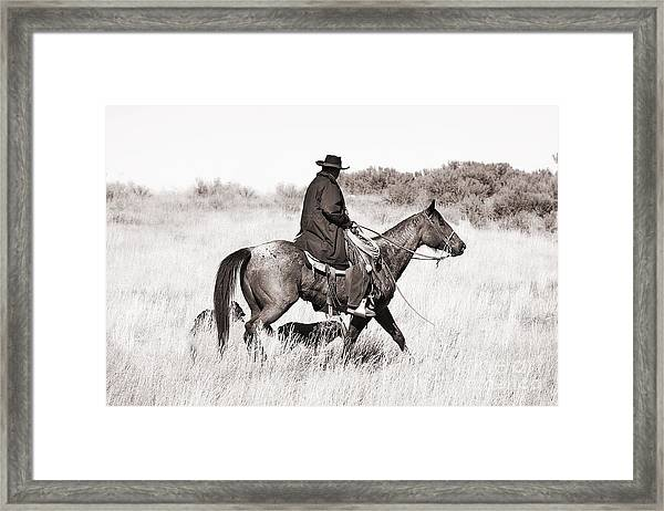Cowboy And Dogs Framed Print