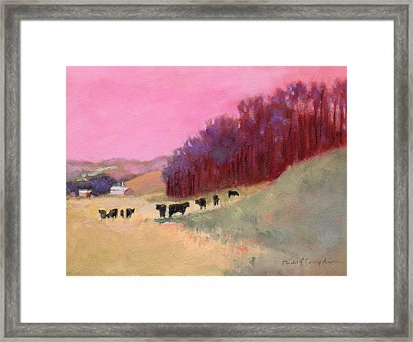 Cows 3 Framed Print