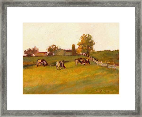 Cows2 Framed Print