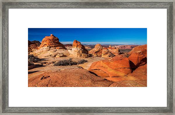 Coyote Lines Framed Print