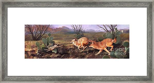 Coyote Run Framed Print