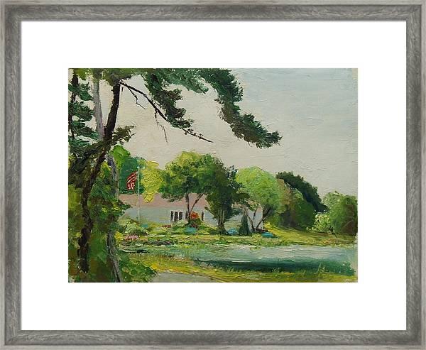 Cranberry Bog July 4 Framed Print