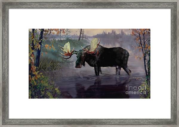 Craven Moose Framed Print