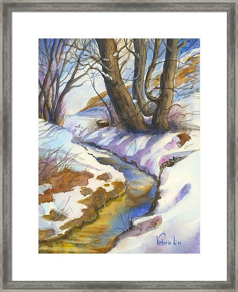 Creek At Bobcat Ridge Framed Print