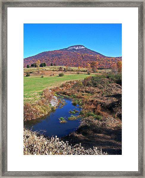 Creek In The Valley Framed Print