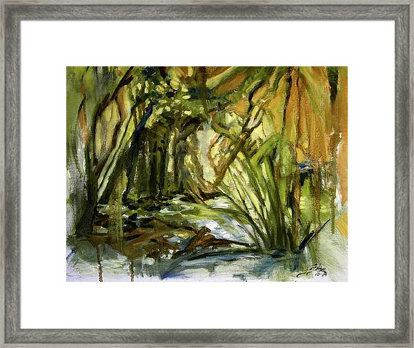 Creek Levels With Overhang Framed Print