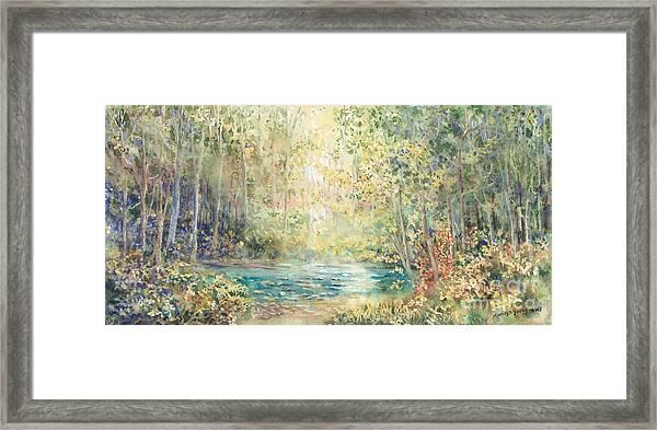 Creek Walk Framed Print