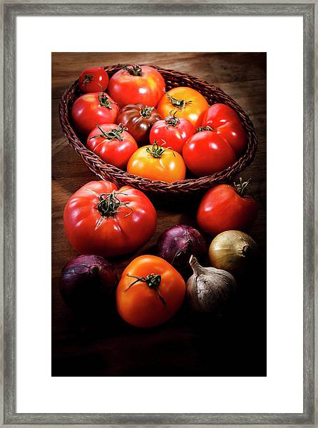 Crop Tomatoes Framed Print