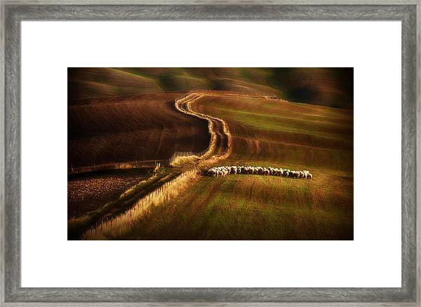 Crossing The Fields Framed Print by