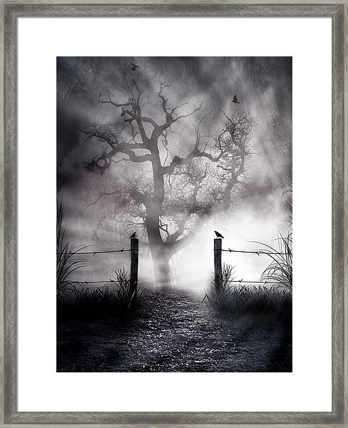 Crow Hallow Framed Print