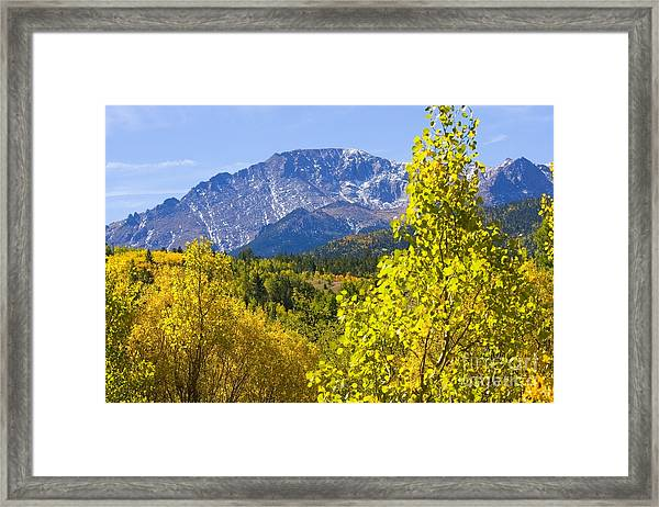 Crystal Creek Autumn Framed Print