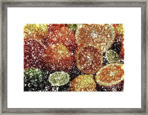 Crystal Grapefruit Framed Print