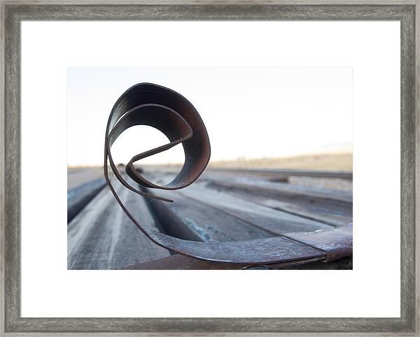 Curled Steel Framed Print