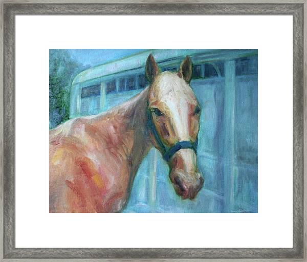 Custom Pet Portrait Painting - Original Artwork -  Horse - Dog - Cat - Bird Framed Print