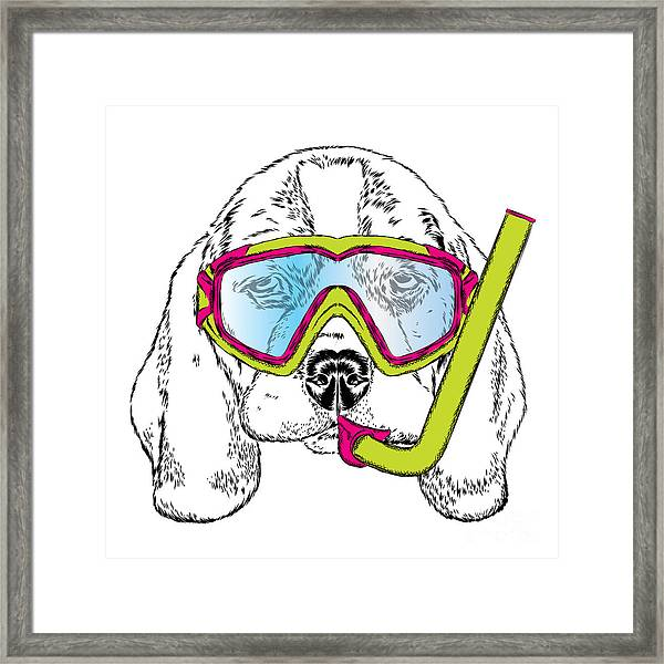 Cute Puppy Wearing A Mask For Diving Framed Print