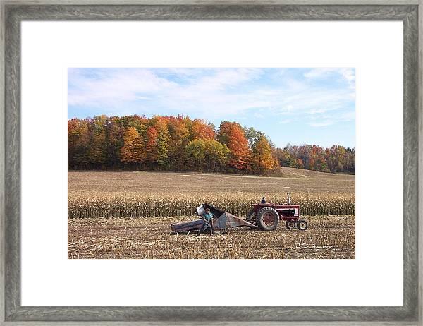 Cutting The Corn Framed Print