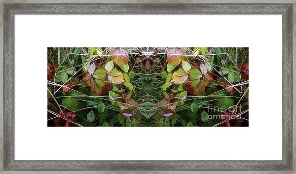 Cycle 4 - Autumn Framed Print