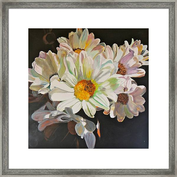 Daisies Framed Print by Jgyoungmd Aka John G Young MD