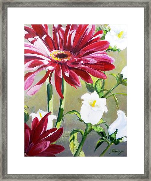 Daisy Delight - 2 Framed Print
