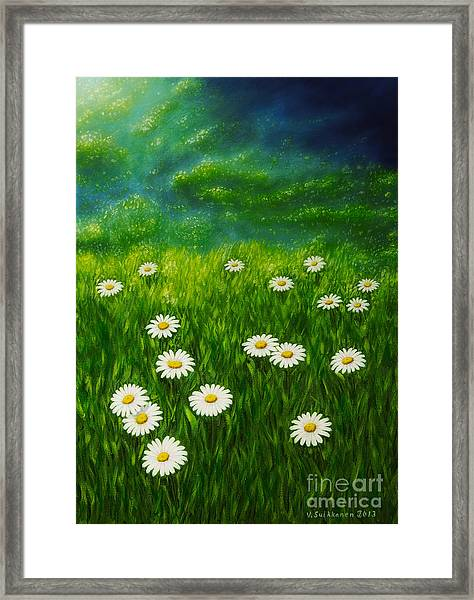 Daisy Meadow Framed Print