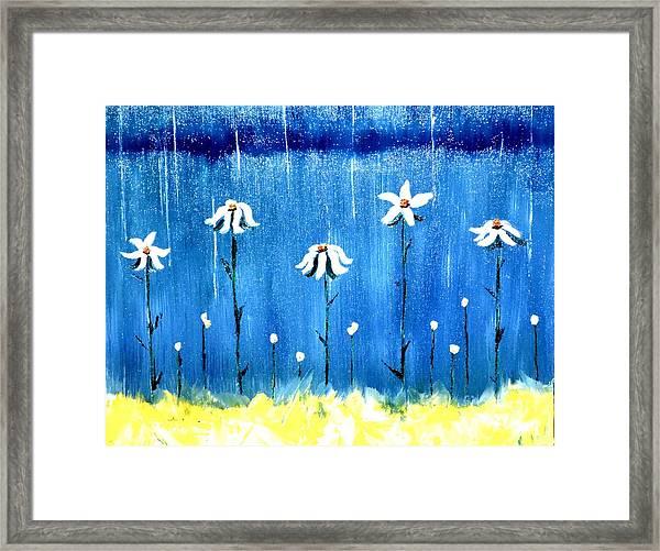 Daisy Rain Blue Framed Print