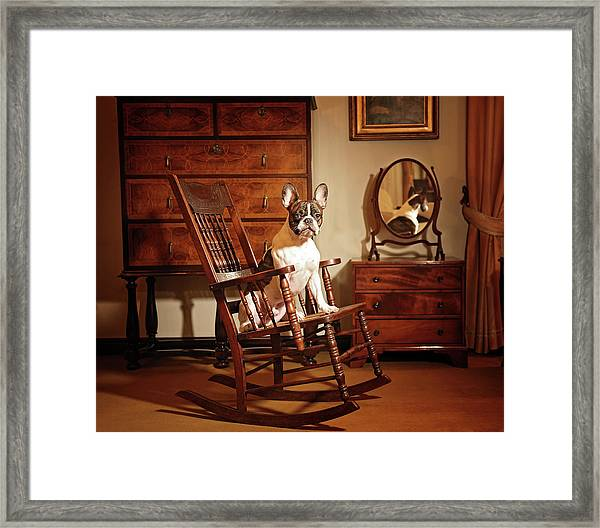 Dali On The Swing Chair Framed Print
