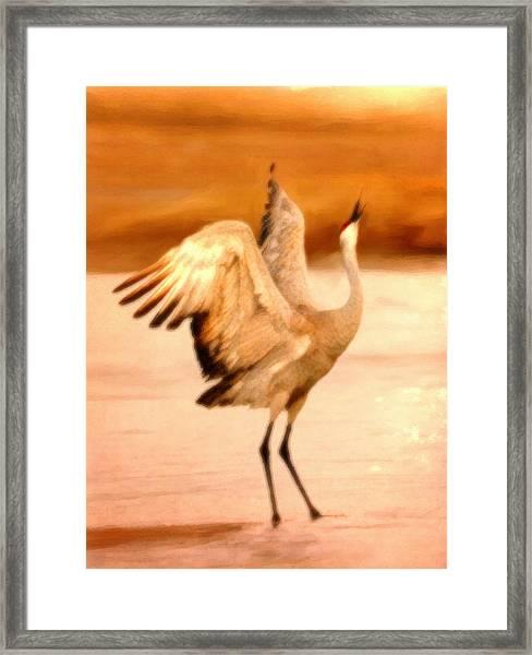 Dance Of The Crane Framed Print